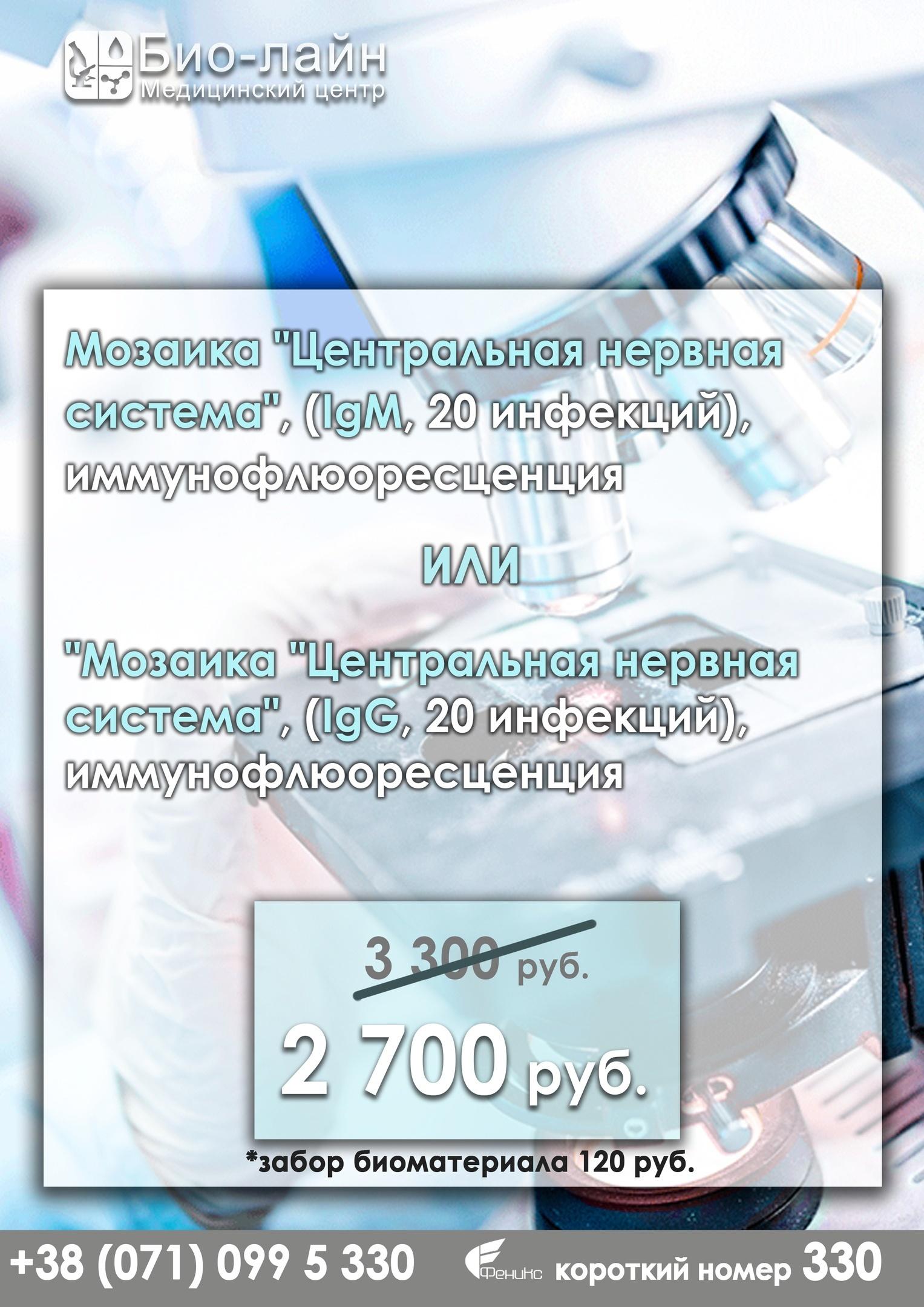 jFCef-XyVGg